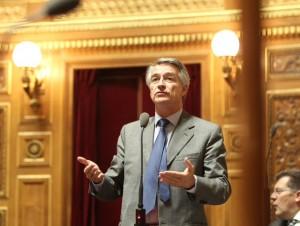 André Reichardt au Sénat (3)