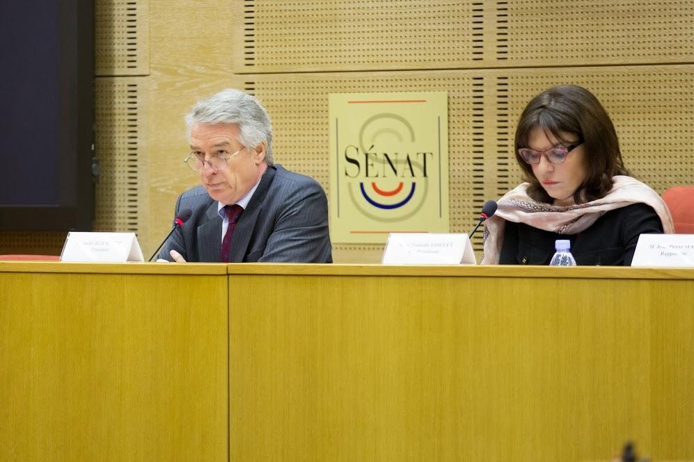 Commission enquête lutte contre reseaux djihadistes (1)