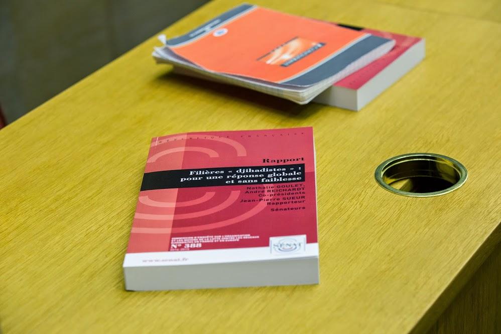 Rapport Commission enquête lutte contre reseaux djihadistes (14)